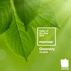 Thumbnail image for Pantone's 2017 Colour Forecast & Colour of the Year